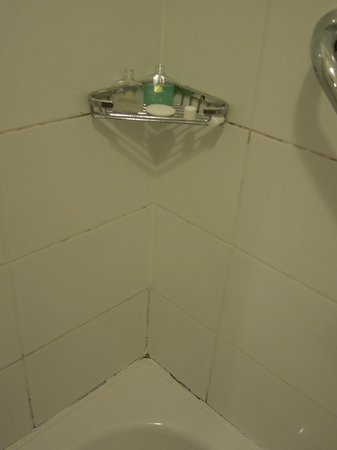 Schoolhouse Hotel: Mold or dirt in grouting