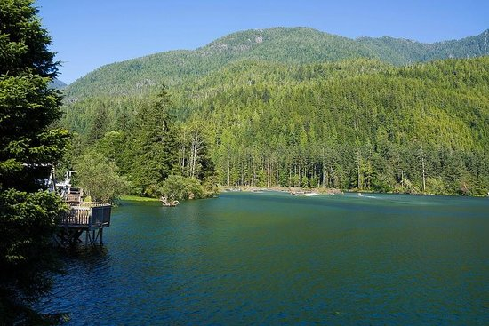 Clayoquot Wilderness Resort: Another view