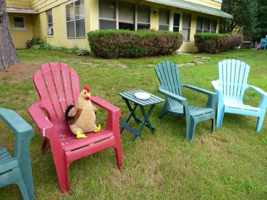 Lake Winnipesaukee Motel: Chicken on the run