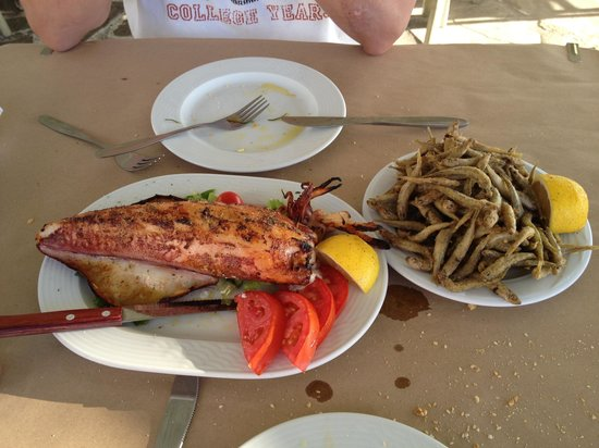 Apoplous Taverna & Ouzeri: Stuffed squid and fried small fishes