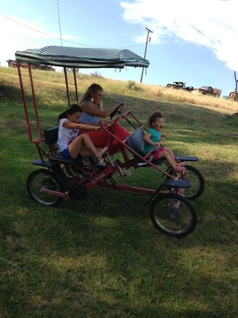 Just An Experience Bed and Breakfast: Riding the 4 man bike!
