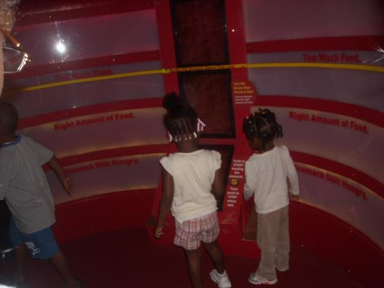 Children's Museum of Manhattan: Feed the tummy