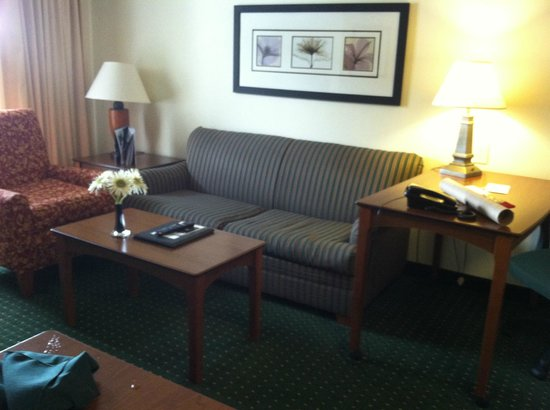 Residence Inn Manassas Battlefield Park : Living Room with Pull out Couch