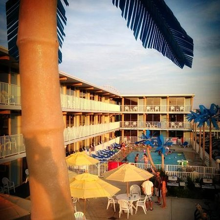 Blue Palms: Sundeck View!
