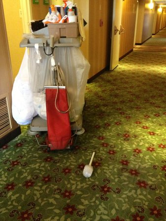 Holiday Inn Bloomington - Airport South: Need a toilet scrubber?  Just step outside your front door...