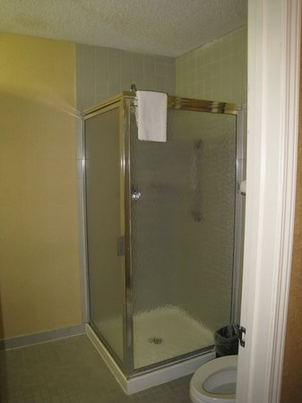 Quality Inn & Suites : shower in bathroom