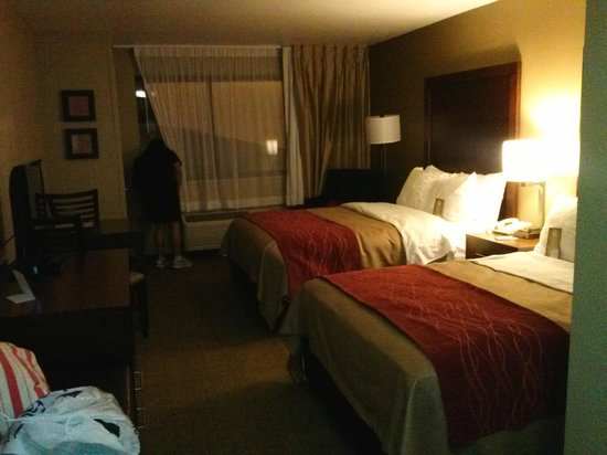 Comfort Inn River's Edge: beds