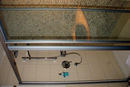 Hotel Zum Walde: Chambre - salle de bains avec douche