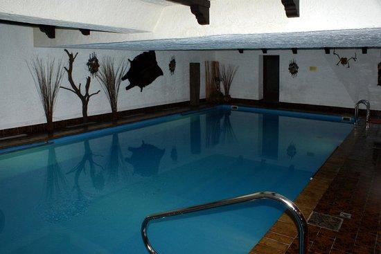 Hotel Zum Walde: Piscine