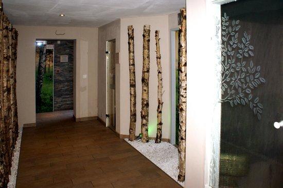 Hotel Zum Walde: Partie du Centre Wellnes avec  sauna infrarouge en bain vapeur