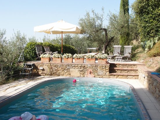 Villa Ugo: The swimming pool