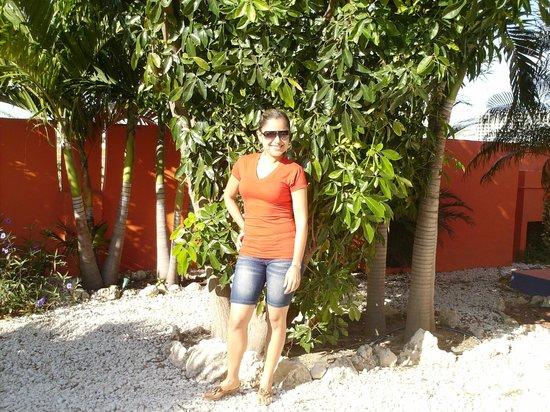 Villa Punta Salina: Pool Area