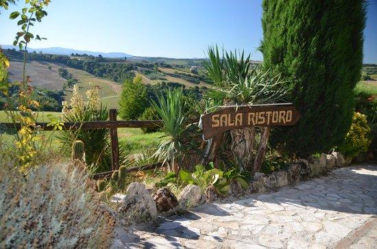 Agriturismo Casale dei Frontini : vanuit het wegje naar het restaurant