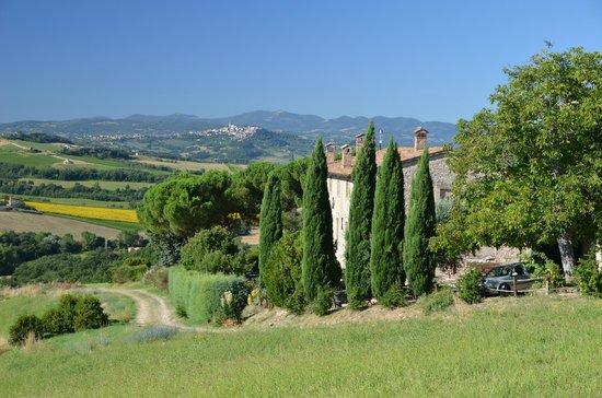 Agriturismo Casale dei Frontini : vanuit hun wijngaard