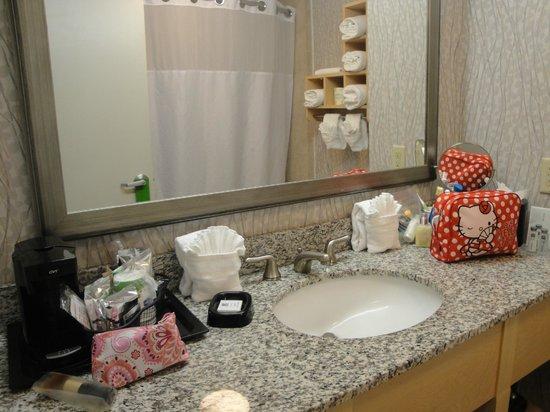 Hampton Inn & Suites by Hilton - Miami/Brickell-Downtown: Baño amplio