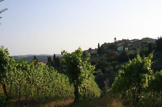 Agriturismo I Casalini: domaine