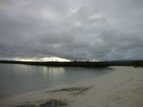 写真Galapagos Beach at Tortuga Bay枚