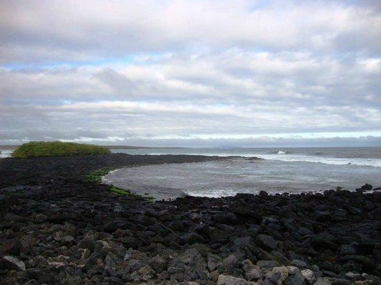Galapagos Beach at Tortuga Bay: Una vista maravillosa