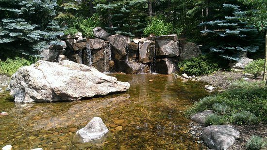 Betty Ford Alpine Gardens: waterfall