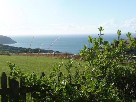 Plas-y-Wern: View from the garden