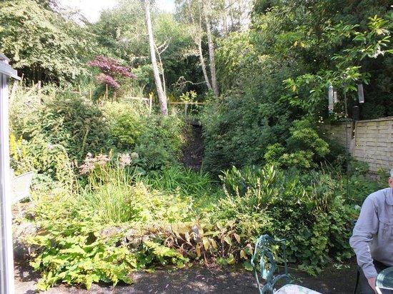 The Croft: Back garden