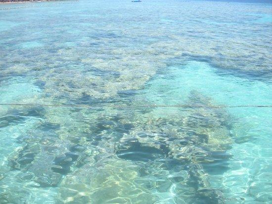 Faraana Reef Resort : dal pontile per immergersi a fare snorkeling