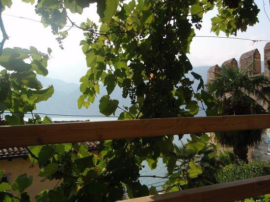 Ristorante Paradiso Perduto: Udsigt over Gardasøen