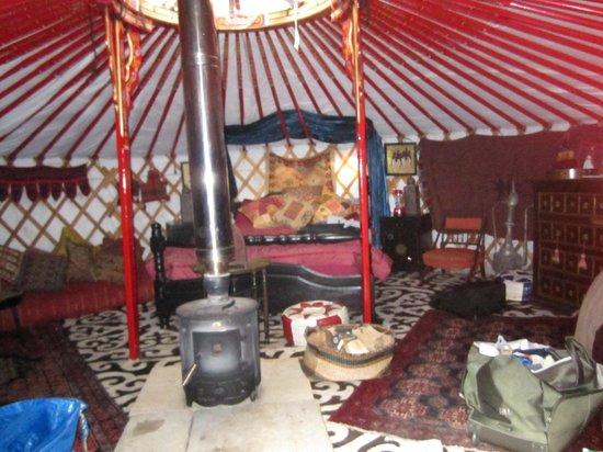 Sopley Lake Yurt Camp: The Dragon Yurt