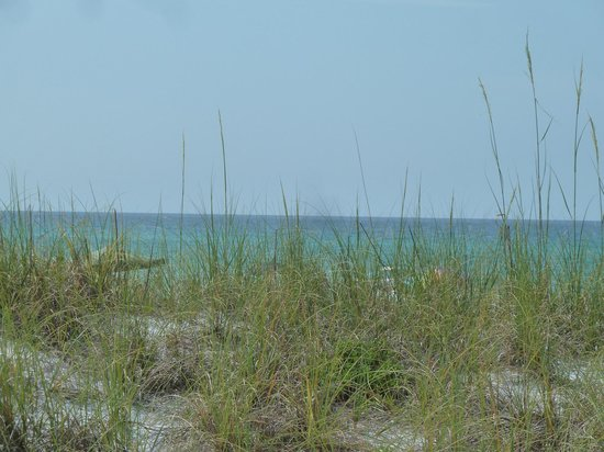 Gulfview Condominiums: View across the street of the Gulf