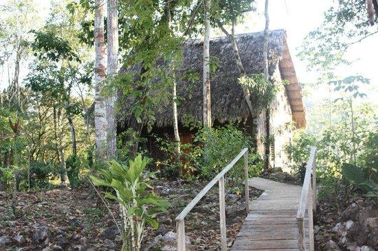 Mariposa Jungle Lodge: Casitas