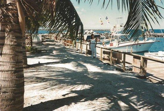The Seafood Bar & Grill: Kawaihea puerto