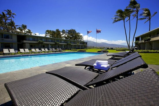 Maui Seaside Hotel : Beautiful view of the ocean from the pool