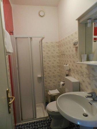 Hotel Il Burchiello: small shower, thin towels
