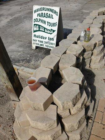 Wyndham Garden Fort Myers Beach: abords de l'hôtel