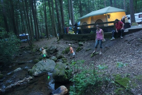 one of the campground sites on the rushing stream so nice picture of vogel state park. Black Bedroom Furniture Sets. Home Design Ideas