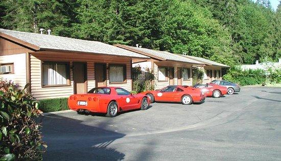 Dogwood Motel: Side View