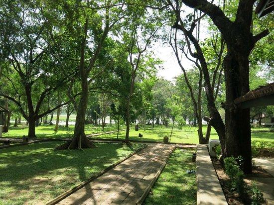 Cinnamon Lodge Habarana: vista del jardin