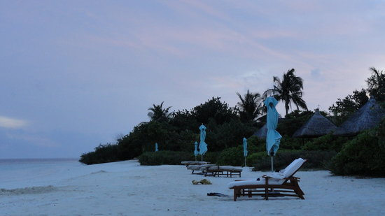 Four Seasons Resort Maldives at Landaa Giraavaru: View of the beach