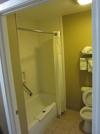 Best Western Huntsville Inn & Suites: Bathroom