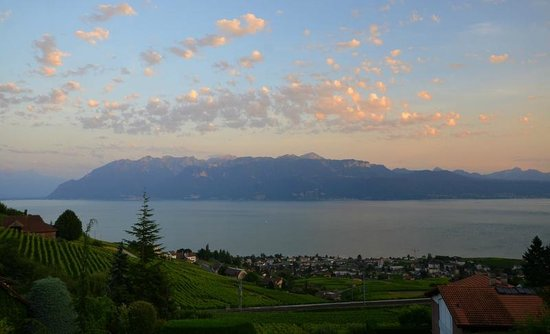 Lavauxhomestay, Bed and Breakfast: LAVAUX HOMESTAY