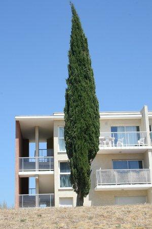 Oree De Montpellier trees - picture of l'oree de montpellier, saint-georges-d'orques
