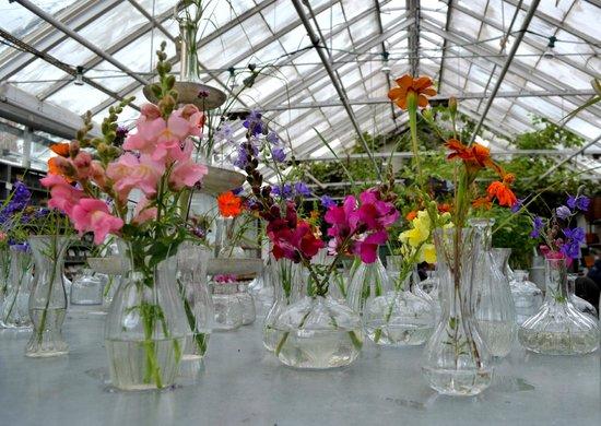 Rosendals Garden: Interno delle serre