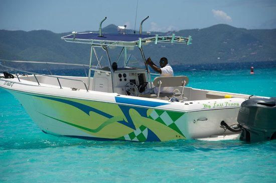Island Rydes BVI: Captain Shaggy, took us to the goods.