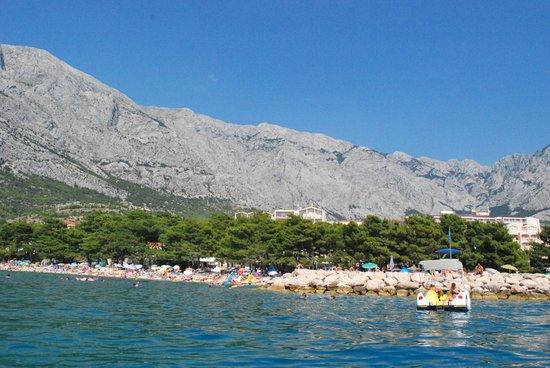Aparthotel Milenij: The beach near town