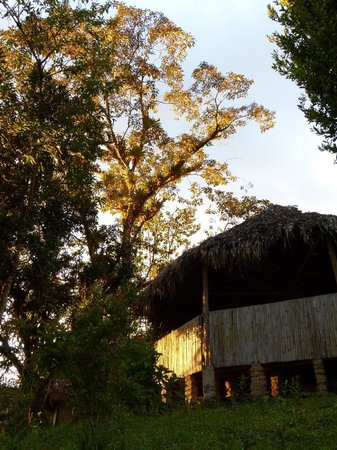 Intag Cloud Forest Reserve Cabins