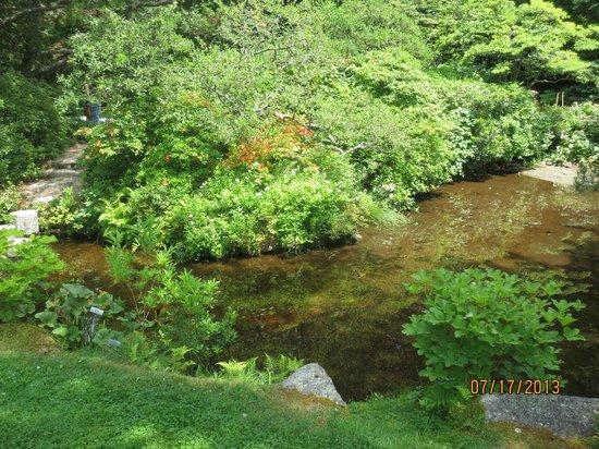 Asticou Azalea Garden: gardens