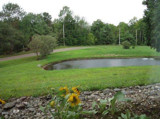 La Bergerie B&B: le lac et piscine naturelle