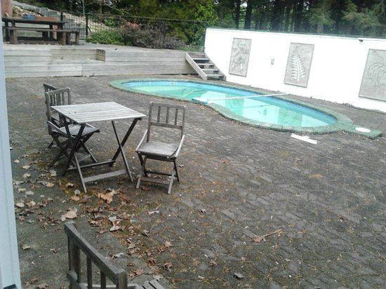 Redwood Lodge: dirty pool area