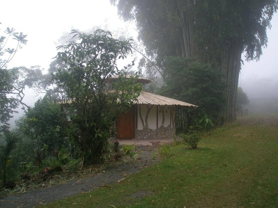 Hotel Cascata Del Bosco: Cabin in the fog