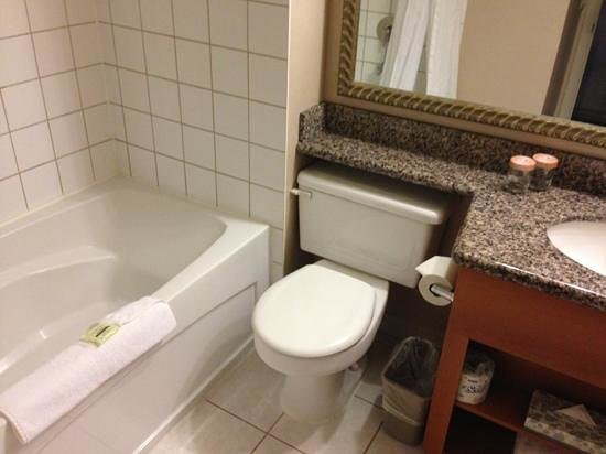 Sandman Hotel & Suites, Calgary Airport: the washroom.. clean and well maintained..